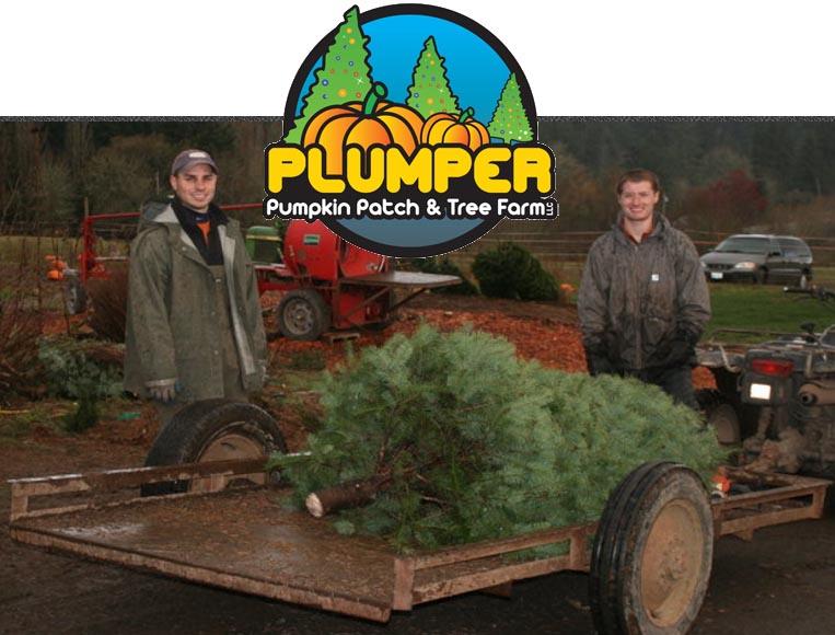 plumper christmas tree portland