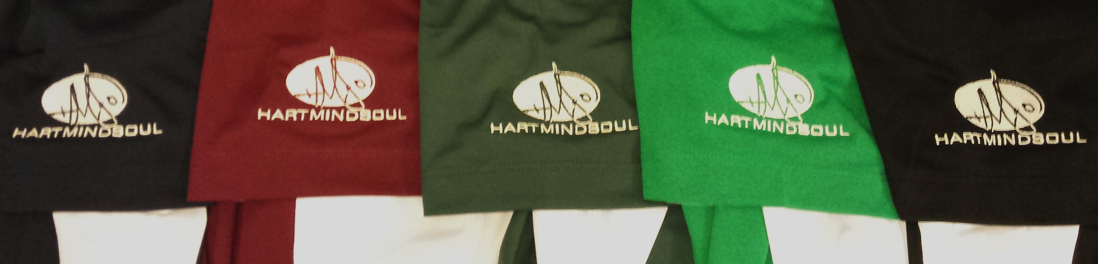 Portland HMS embroidery dryfit polo shirts