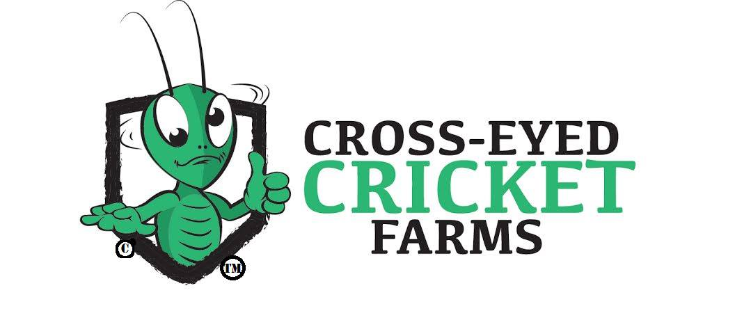 cross eyed cricket farms