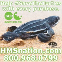 HMS nation save the turtles