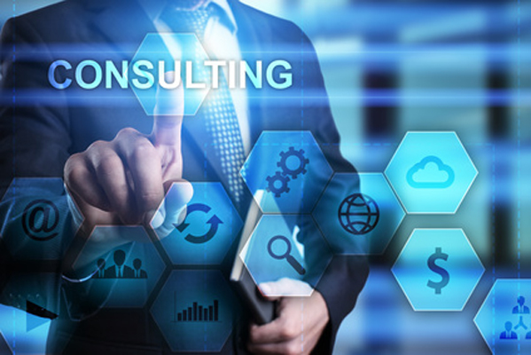 Consulting Services HMS nation